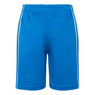 Basic Team Shorts Junior 2